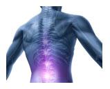Rückentraining - EMS Sportstudio Unterhaching